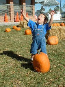 pumpkin-buyer